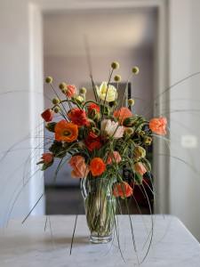 papaveri, fiore all'occhiello