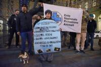 Protesta Enpa sotto palazzo civico a Torino