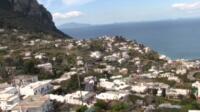 capri covid free