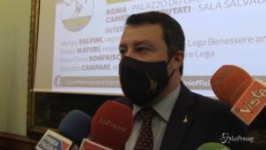 Caso Grillo, Salvini