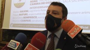 Riaperture, Salvini