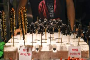 Insetti fritti i vengono venduti in un mercato nella città di Nanning