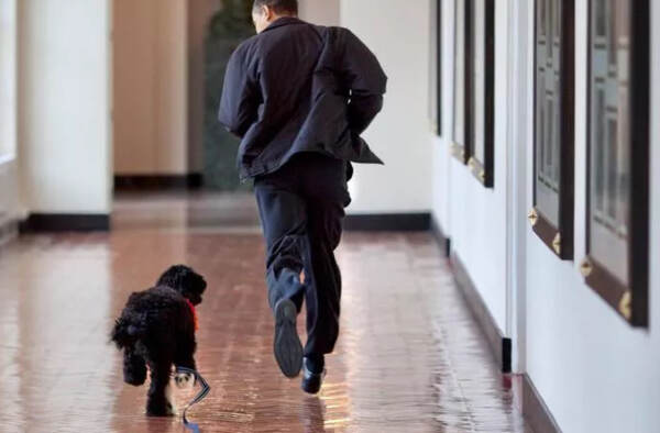 Barack Obama e Bo