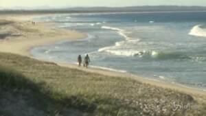 Australia, surfista muore dopo l'attacco di uno squalo