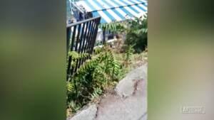 Capri, precipita minibus: un morto e 28 feriti
