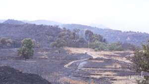 Roghi in Sardegna, si contano i danni