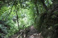 riserva naturale sfilzi
