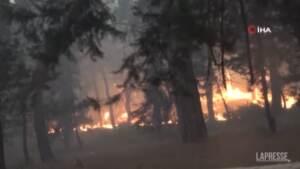 Turchia, incendio vicino a Manavgat: almeno tre morti