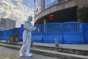 WHO China Virus Origins