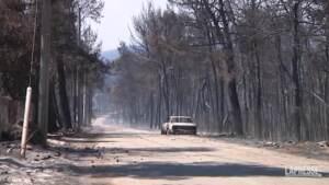 Ancora emergenza incendi in Grecia