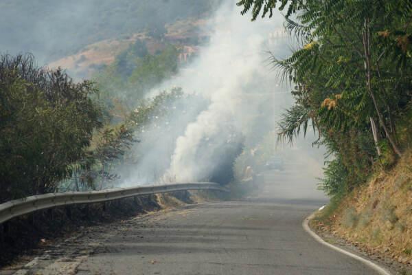Incendi, vittime salgono in Calabria: chiesto stato emergenza. Allarme in Sicilia