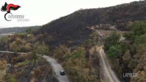 Incendi in Sicilia: fermati due allevatori presunti piromani, sono padre e figlio