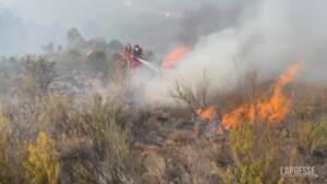 Incendi in Spagna, le fiamme minacciano anche campi e animali