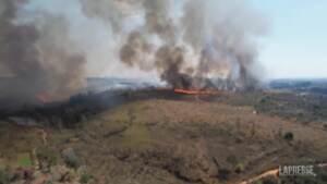 Brasile, a fuoco riserva nel parco di Juquery
