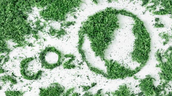 16 settembre: la Giornata internazionale per la preservazione dello strato di ozono
