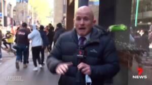 Melbourne: proteste no vax, giornalista colpito da una lattina mentre è in onda